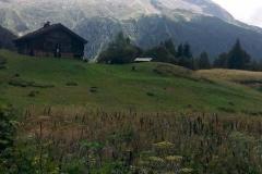 mont-blanc-2015-27